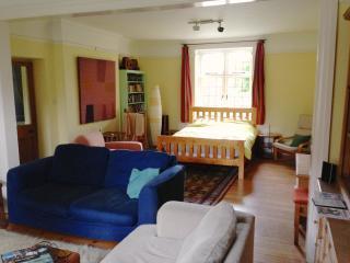 Country house:huge garden room, log burner wifi - Buckfastleigh vacation rentals