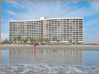 Directly on the sand on East Beach - Galveston vacation rentals