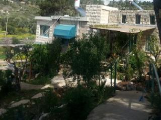 Artists Village House with Sea View - Beit Oren vacation rentals