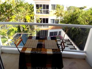 Penthouse suit with Pool and roof terrace - Tulum vacation rentals