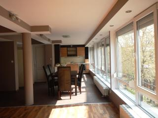 Bright apartment in the city center - Plovdiv vacation rentals