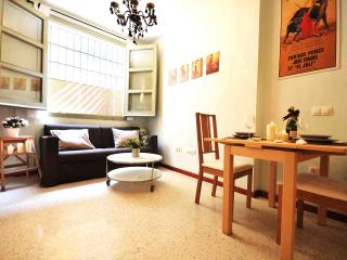 Studio with shared patio in city cente H2 - Malaga vacation rentals