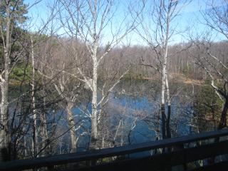 Wonderful mountain home on lake - Tryon vacation rentals