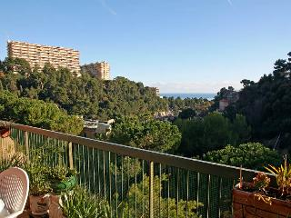 2 bedroom Apartment with Outdoor Dining Area in Nice - Nice vacation rentals