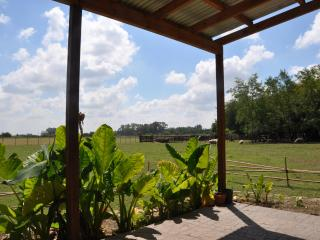 A beautiful farm in the Pampas - Argentina - Lobos vacation rentals