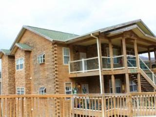 Eagle's Nest Penthouse 2Bdr Condo - Galena vacation rentals