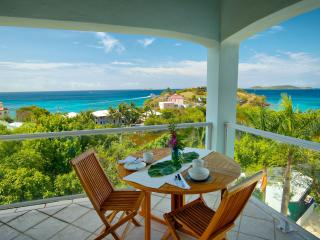 Luxurious Penthouse, Sunset Views! Walk to town! - Cruz Bay vacation rentals