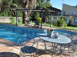Bright Lezignan-la-Cebe vacation House with A/C - Lezignan-la-Cebe vacation rentals