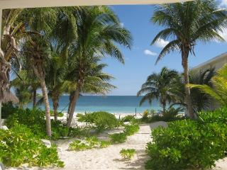 Comfortable Condo with Deck and Internet Access - Puerto Morelos vacation rentals