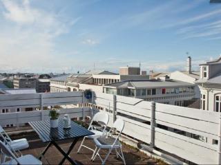 B14 Big apartment down town Reykjavik - Mosfellsbaer vacation rentals