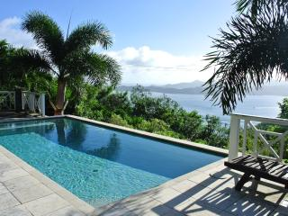 Luxury Villa on Tortola British Virgin Islands! - Great Camanoe Island vacation rentals
