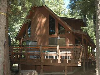 Regalado Is a Special Cabin !  Enjoy 3 bdrms, loft, 2 bath, Sleeps 11. - Dorrington vacation rentals