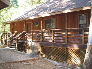 Big Trees Chalet (Mack) - Dorrington vacation rentals