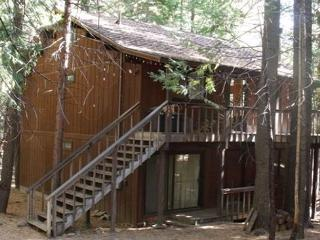 Cozy 3 bedroom Camp Connell Cabin with Central Heating - Camp Connell vacation rentals