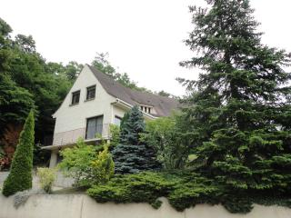 Charming 1 bedroom Apartment in L'Etang-la-Ville - L'Etang-la-Ville vacation rentals
