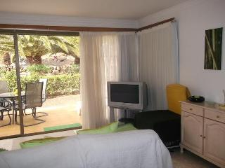 Ground floor spacious one bedroom apartment - Tenerife vacation rentals