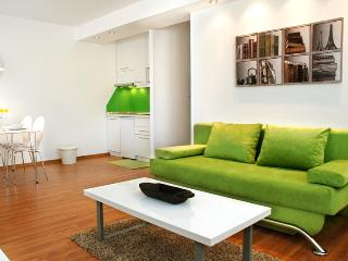 New, modern apt. close to all major sights - Green - Sarajevo vacation rentals