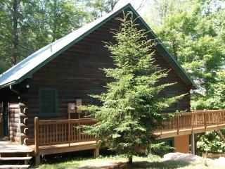 Mountain Cabin Getaway Dillard, GA Sleeps 12 - North Georgia Mountains vacation rentals