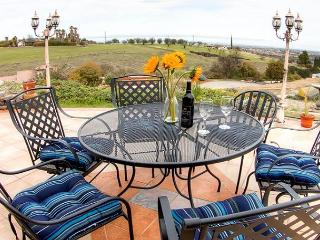Expansive views of Paso Robles - Paso Robles vacation rentals