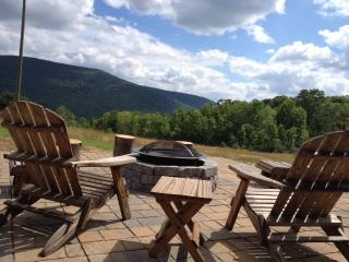 Catskill Mountain View House, Belleayre, Fire Pit! - Roxbury vacation rentals