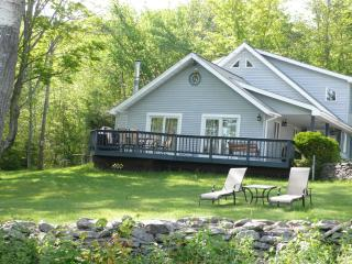 Catskill Mountain View House, Belleayre, Fire Pit! - Roxbury vacation rentals