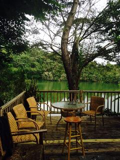 Lakeside Cottage in the Heart of Carite Forest - Guayama vacation rentals