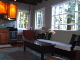 3 bedroom Condo with Deck in Guerneville - Guerneville vacation rentals