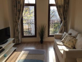 Great Stay,Great Value: your Private Studio Apt - Istanbul vacation rentals