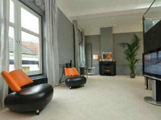 Beautiful luxurious loft in old town center Haarlem - Haarlem vacation rentals
