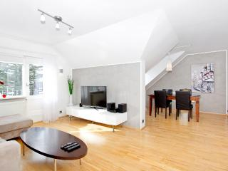 Beautiful apartment central location - Reykjavik vacation rentals