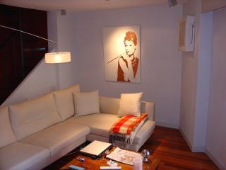 Modern duplex in the heart of Pamplona - Basque vacation rentals