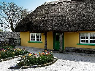 Thatched Home in Adare,Ireland's Prettiest Village - Limerick vacation rentals