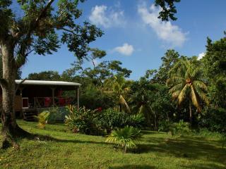 Maison 2 Chambres Reserve Cousteau Sur Un Parc Tropical De Un Hectare - Bouillante vacation rentals