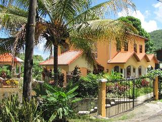 Walk to Beaches Hibiscus Apartment in St. Lucia - Marigot Bay vacation rentals