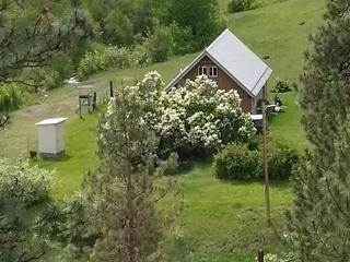 Get Away From It All At This Mountain Paradise - Corvallis vacation rentals