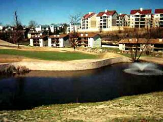 Come enjoy Branson - Something for everyone of all ages - Branson vacation rentals