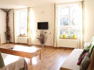 Bianca Studio block away from Krakow's Main Square - Krakow vacation rentals