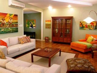Large & Luxury 3 bds apartment - Rio de Janeiro vacation rentals