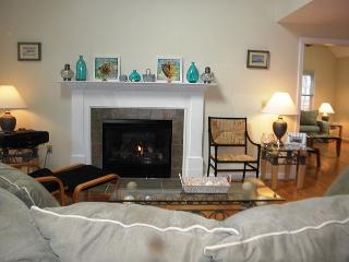 EASTHAM, NICE CONTEMPORARY CAPE NEAR SALT POND & NAUSET BEACH! - Eastham vacation rentals