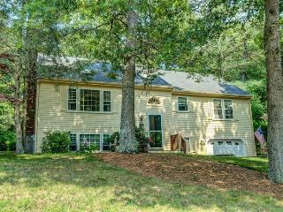 SOUTHSIDE OSTERVILLE NEAR THE VILLAGE!! 121868 - Osterville vacation rentals