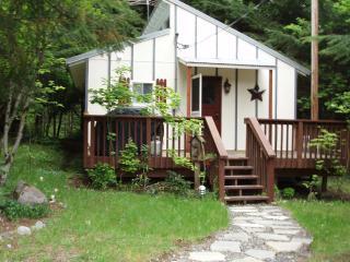 Ashford - Mt. Rainier Vacation Rental Hot Tub!! - South Cascades Area vacation rentals