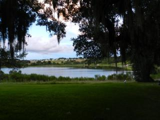 Comfortable House Located to Beaches and Disney - Eustis vacation rentals