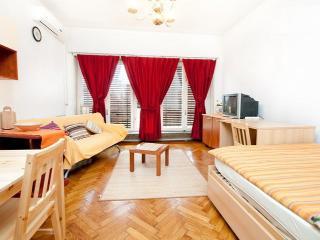 Apartment Zagreb City center - Sveta Nedelja vacation rentals