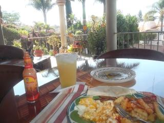 Wonderful Villa with Outdoor Dining Area and Television - San Juan Cosala vacation rentals