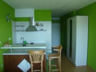 Apartments Dalmatin - Racisce vacation rentals
