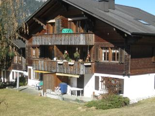 Cozy 2 bedroom Condo in Blankenburg - Blankenburg vacation rentals