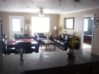 brand-new well-stocked apt minutes from skiing - Salt Lake City vacation rentals