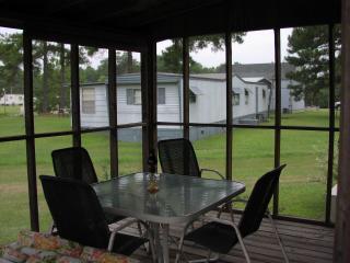 Cute cabin on Potato Creek (Flynn home) - Summerton vacation rentals