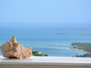 Gorgeous view-Playas Coson&Bonita - Las Terrenas vacation rentals