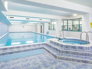 Luxury London Apartment w/ Pool and Fitness Center - London vacation rentals